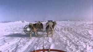a dog team pulling sled over snow and moving out onto a traveled