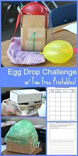 Challenge Drop On Egg Drop Challenge 2015 Buggy And Buddy