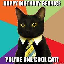 Cool Cat Meme - happy birthday bernice you re one cool cat business cat meme