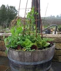 country garden gallery ideas for garden royal gardens garden