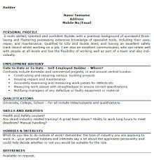 Resume Professional Summary Example by Example Resume Activities And Interests