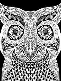 coloring owls on pinterest owl coloring pages owl drawings and owl