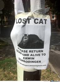 Lost Cat Meme - lost cat notice by awesomeone meme center