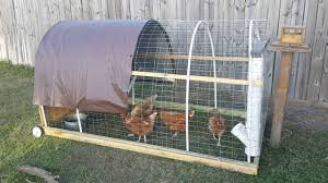 Design My Backyard Chicken Tractor Design My Backyard Chickens Youtube