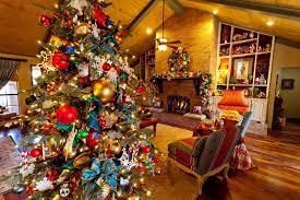 wondrous design show me trees tree colors decorating ideas