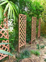 grow up diy trellis structures miss smarty plants