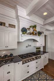 Designer White Kitchens 61 Best Painted Kitchens Images On Pinterest Kitchen Ideas