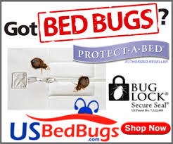 What Do Bed Bugs Eat Bed Bug Encasements For Mattresses And Box Springs