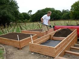 Raised Vegetable Garden Ideas How To Build A Raised Vegetable Garden Box Design Ideas