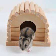 rats homes promotion shop for promotional rats homes on aliexpress com