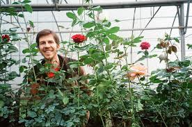 What Is Urban Gardening Joel Rosenberg Seedbombing New Urban Culture Partizaning