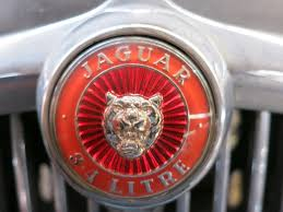 8 best images about auto ornaments on