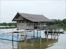 small beach house on stilts collection river house plans on stilts photos home