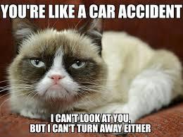 Grouchy Cat Meme - 7 best grumpy cat memes images on pinterest chistes cute kittens