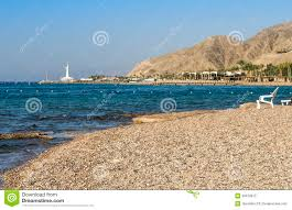 view on coral reef near eilat israel royalty free stock images