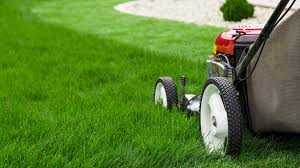 Lawn Care Gadgets by Gardening Tips Ideas U0026 Stories Today Com