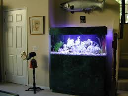 18 magnificent aquarium designs for your home loversiq