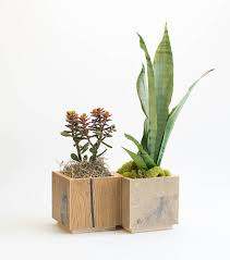 modern planter indoor planter square planter cactus etsy