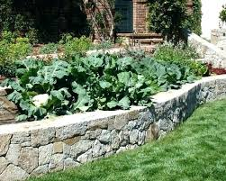 Garden Bed Layout Raised Garden Bed Designs Ideas Garden Beds Design Ideas