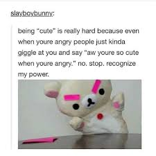 Cute No Meme - i m not cute b tch meme by shewolf008 memedroid