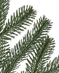 nordmann fir narrow artificial christmas tree balsam hill