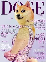 Original Doge Meme - wow doge is getting fashionable doge