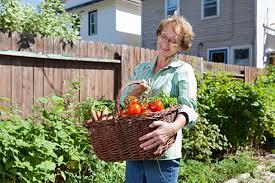 fantastical how to start an organic garden contemporary ideas how