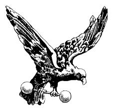 meet my falcon dougkochmanski com