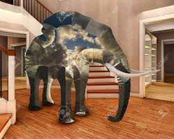 elephant in the living room elephant in the living room 3d rendering stock photo picture and