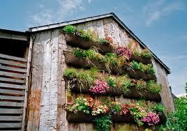 Summer Backyard Ideas Diy Garden Ideas To Upgrade Your Backyard For The Summer 2