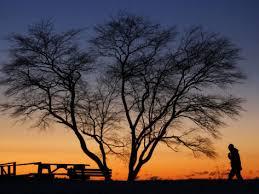 Light Of Dawn First Light Of Dawn Imagine Infinity