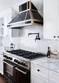 kitchen picture houzz antique white kitchen cabinets home