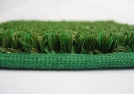 Green Turf Rug Outdoor Grass Carpet Roll U2014 Steveb Interior Outdoor Grass Carpet