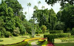 What Are Botanical Gardens Most Beautiful Botanical Gardens Around The World Travel Leisure
