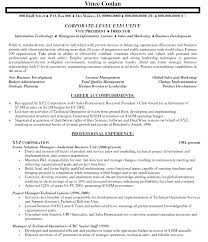 C Level Executive Resume Samples by Resume Template Human Resources Executive
