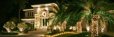 Put Lights On Christmas Tree by Palm Tree Christmas Lights Palm Tree Lights Warm Weather
