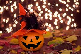 decoration halloween pumpkin with witch hat and background lights