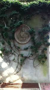 Garden Wall Plaque by 139 Best Home Images On Pinterest Wall Fountains Garden