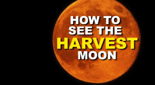 when to see the harvest moon 2017 birmingham mail
