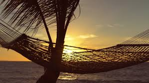 hammock and palm trees at sunset slow motion luxury vacation