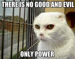 Evil Cat Meme - evil cat names 6 cat and dog lovers cat and dog lovers