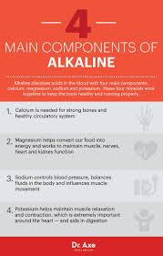 Which Cell Helps In Movement Of Bones Alkaline Water Beneficial Or All Hype Dr Axe