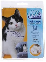 amazon com feline soft claws nail caps kitten clear pet nail