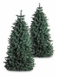 6 1 2 foot artificial pre lit tree qvc