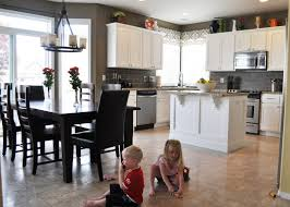 Kitchen Makeover Blog - the dizzy house