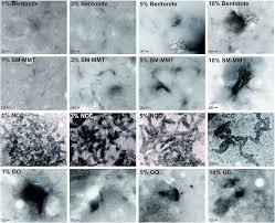exfoliating nanomaterials in canola protein derived adhesive