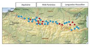 map of pairs the bearded vulture in the pyrenees 43 pairs last year