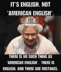 Correct Grammar Meme - 2621 best grammar spelling police images on pinterest