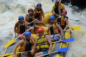 cairns car guide cairns attractions