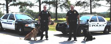 belgian malinois police police department ardmore ok official website